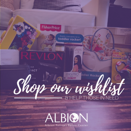 Albion's Wishlist : Browse & shop our wishlist today!