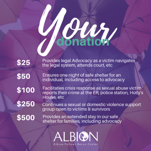 Albion donation levels